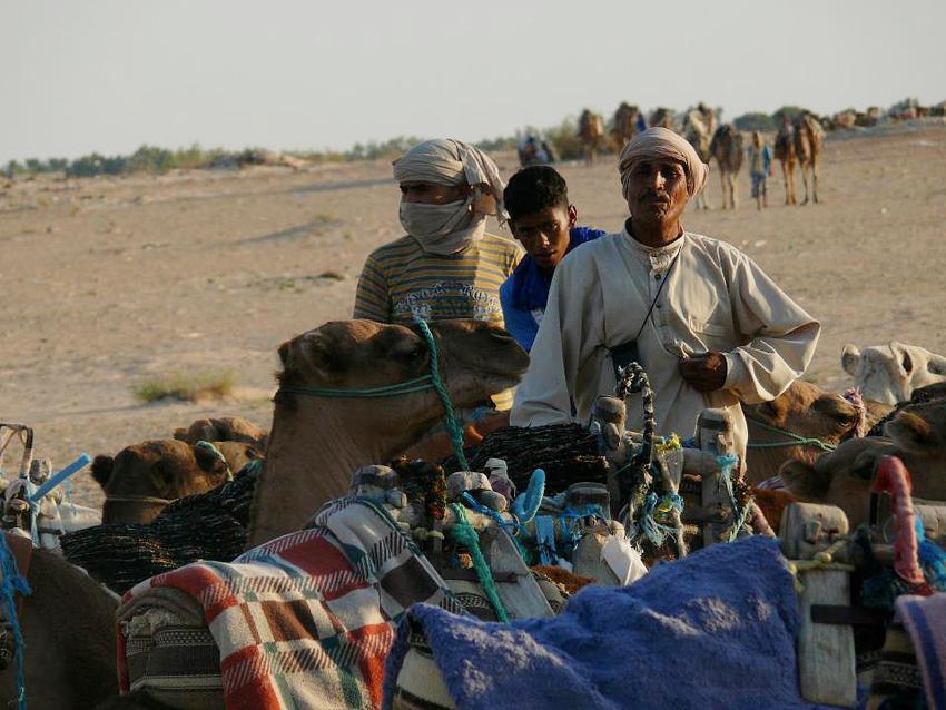 Aux portes du désert Saharien