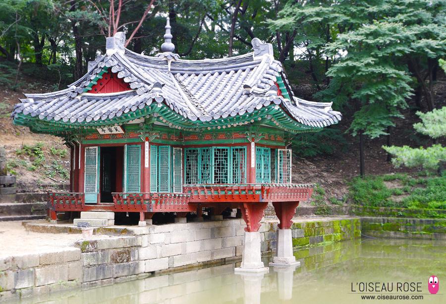 Palais Changdeokgung, Arbre plusieurs fois centenaire - Séoul - Corée du Sud
