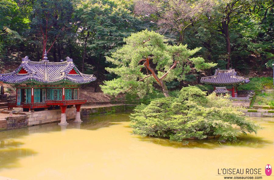 """Palais Changdeokgung, """"secret garden"""" - Séoul - Corée du Sud"""