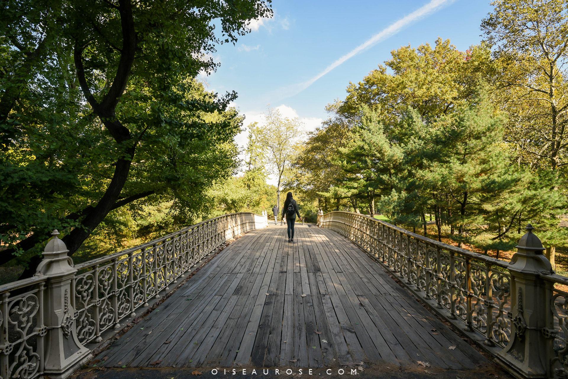 a-faire-a-new-york-central-park