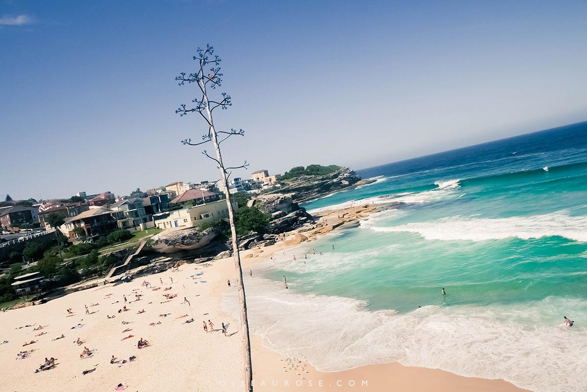 Australie-Bondi-Beach-1