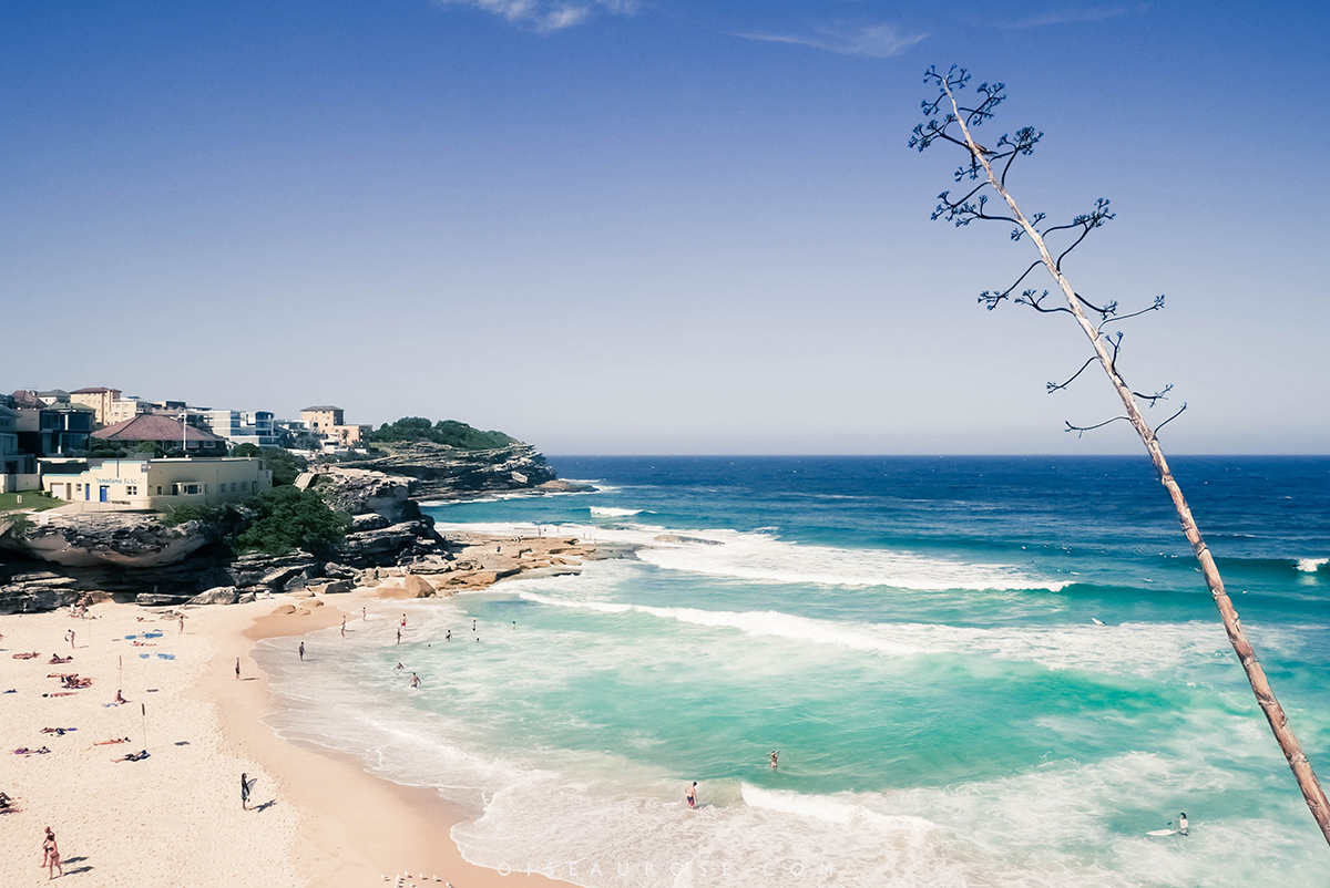 Australie-Bondi-Beach-10