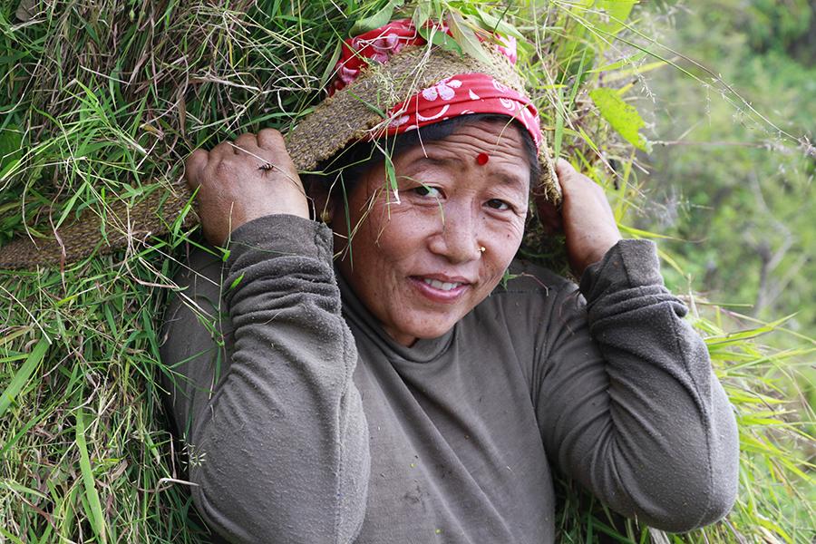 Bandipur : petit village perché au cœur des montagnes Népalaises