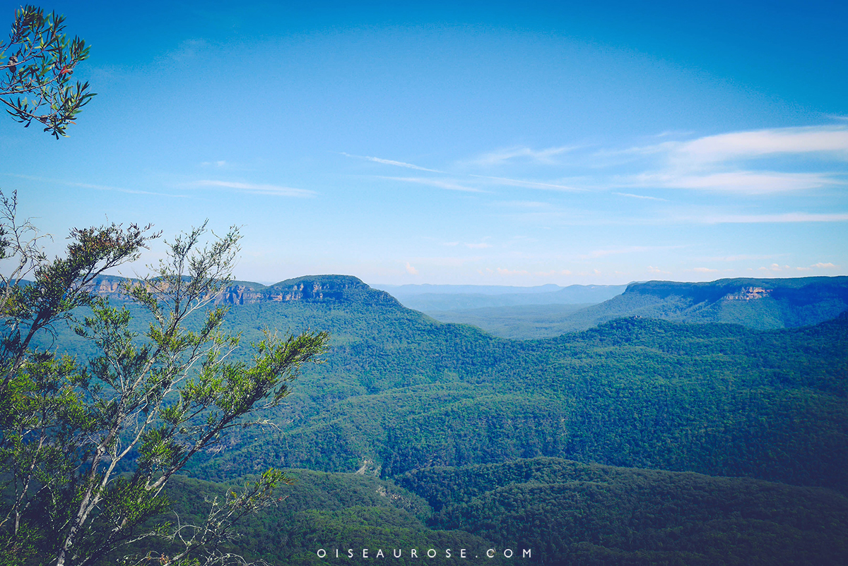 Blue-Mountains-Australie-landscape