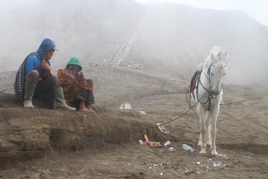 Volcan BROMO à cheval, indonésie