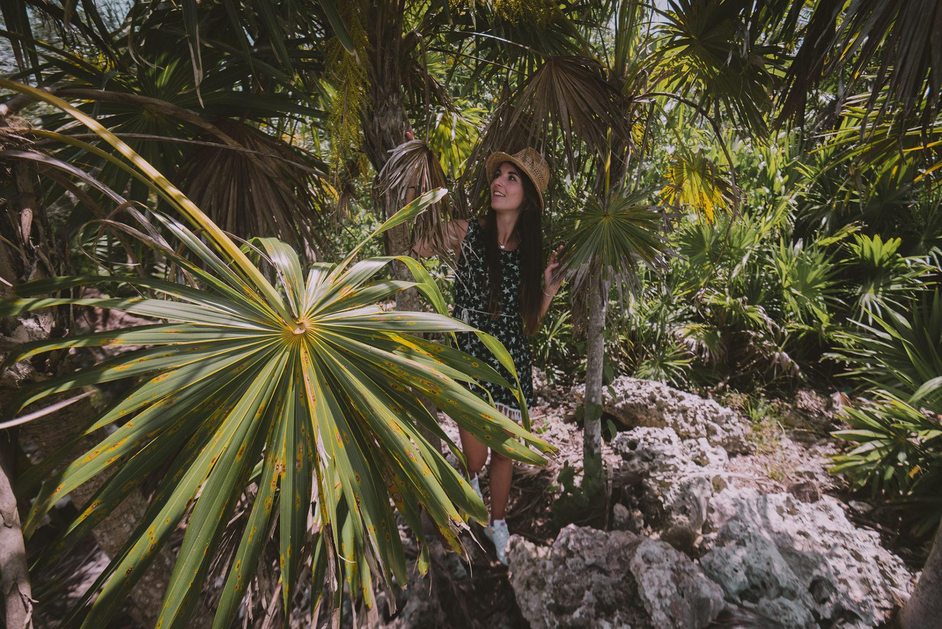 Nature luxuriante Cuba