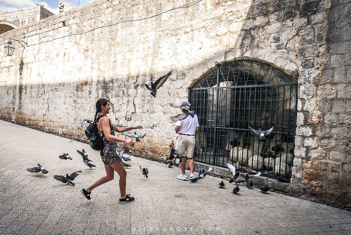 Dubrovnik-camille-blog-voyage