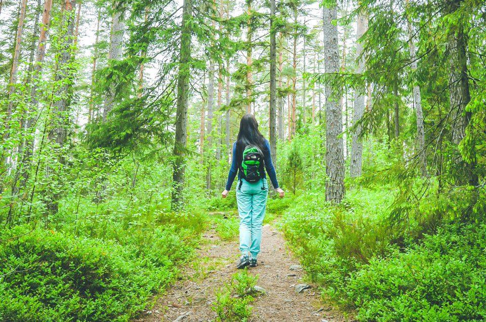Une super randonnée dans la forêt Finlandaise