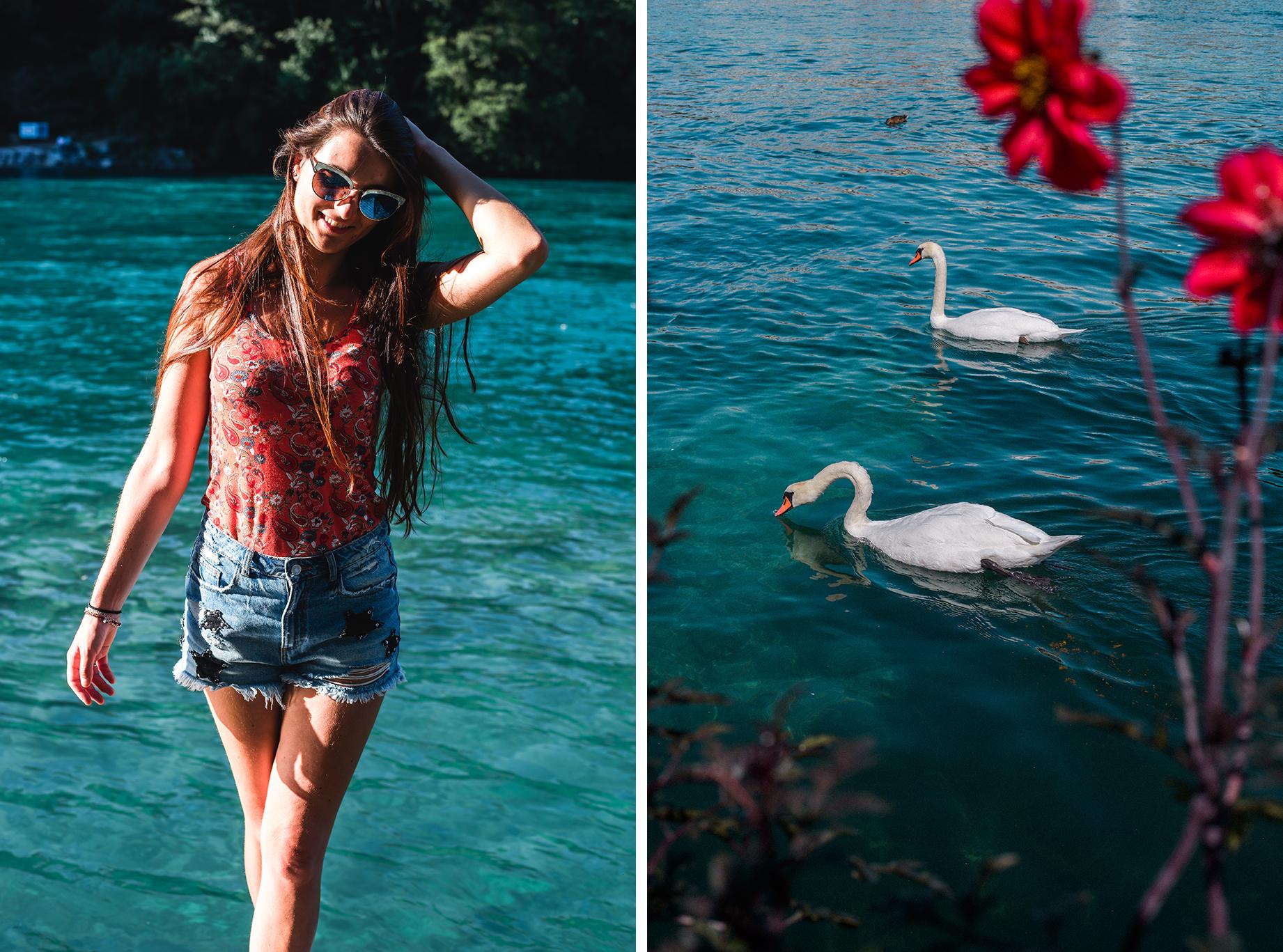 Nager dans le Rhône, Genève