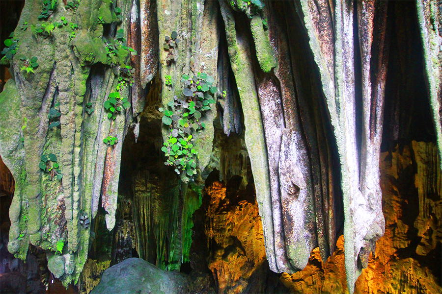 Entrée de la grotte de Tien Son