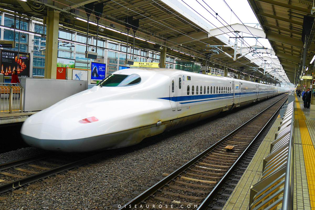 JRpass-train-japon-oiseaurose