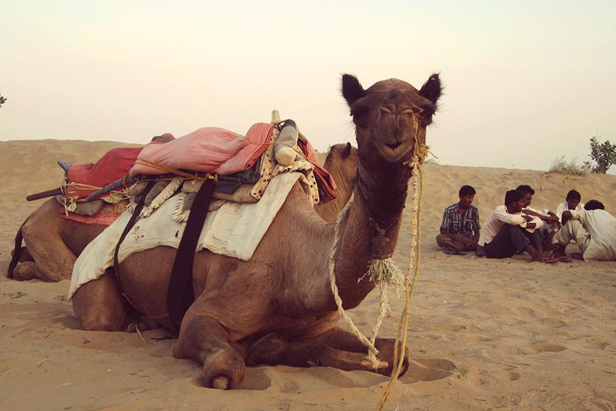 Jaisalmer12SMALL - Copie