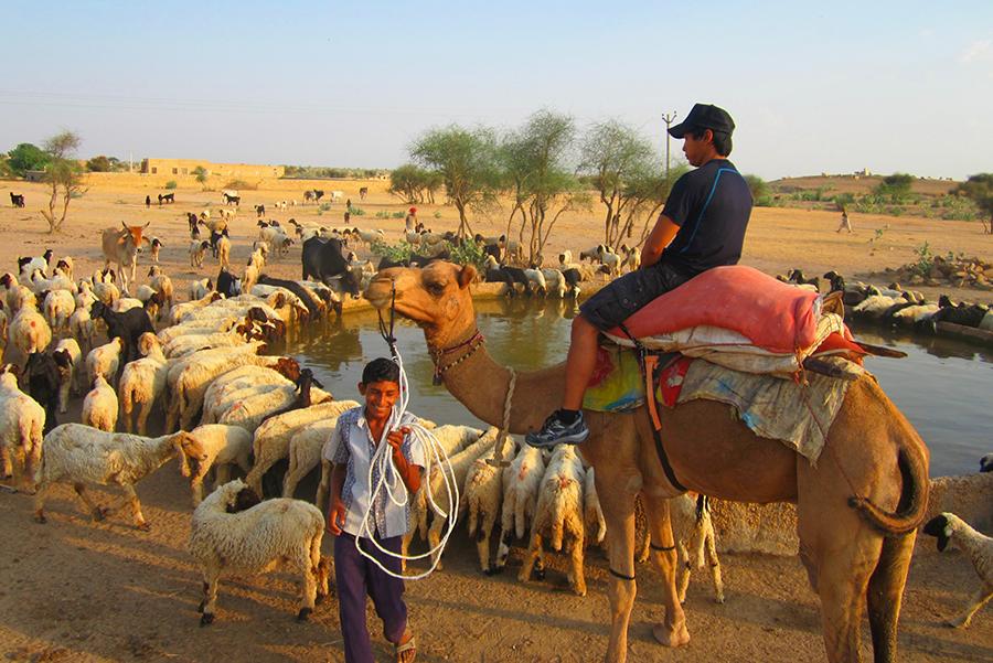 Jaisalmer13SMALL - Copie