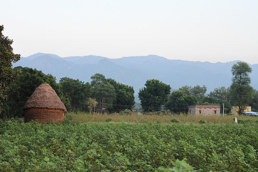 Rencontre à Ranakpur