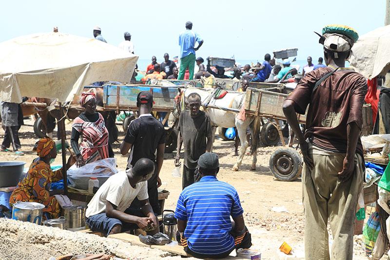 Voyage au Sénégal, rencontres et découvertes dans la bonne humeur !