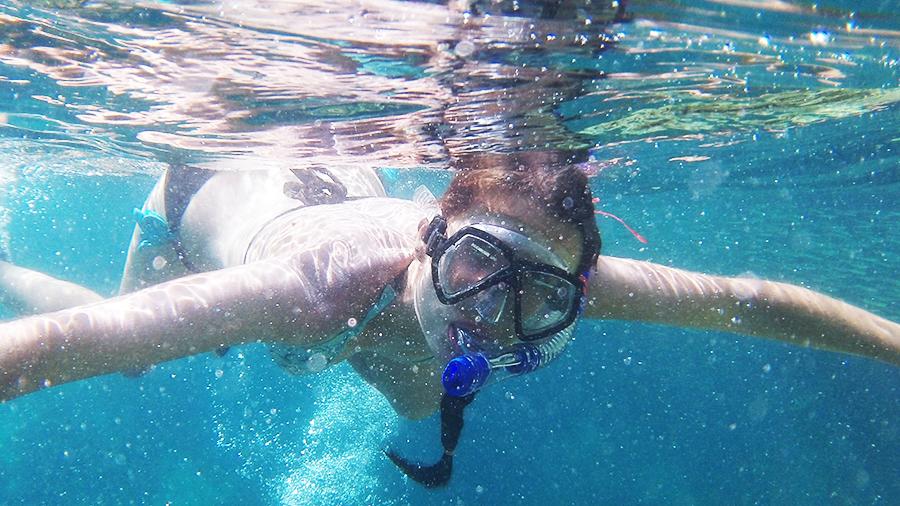 Snorkeling-koh-tao-oiseaurose
