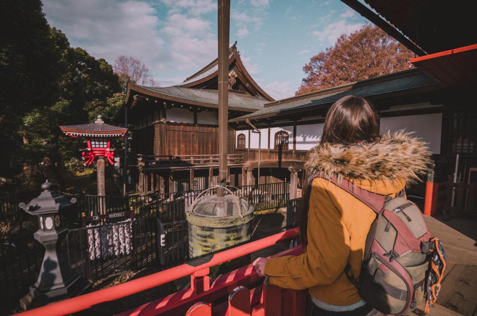 Visiter les quartiers traditionnels de Tokyo (avec Ueno, Yanaka, Asakusa et Nezu)