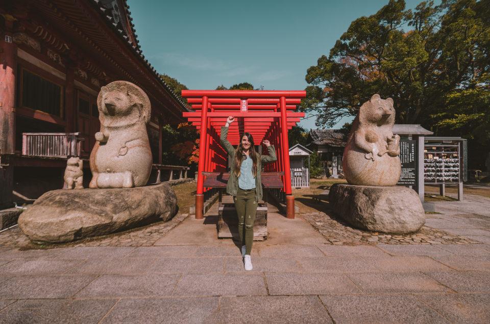 L'île de Shodoshima et ses paysages à couper le souffle !