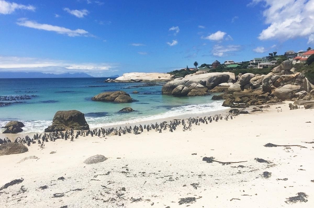 afrique-sud-plage