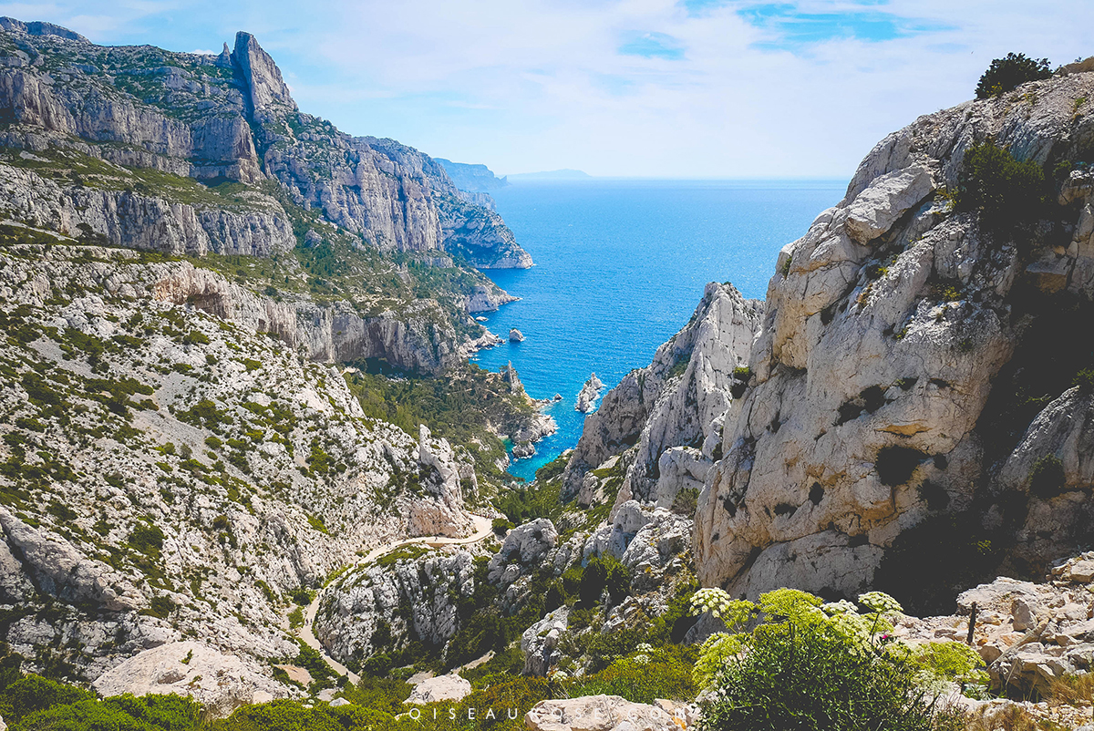 calanques-Marseille-6