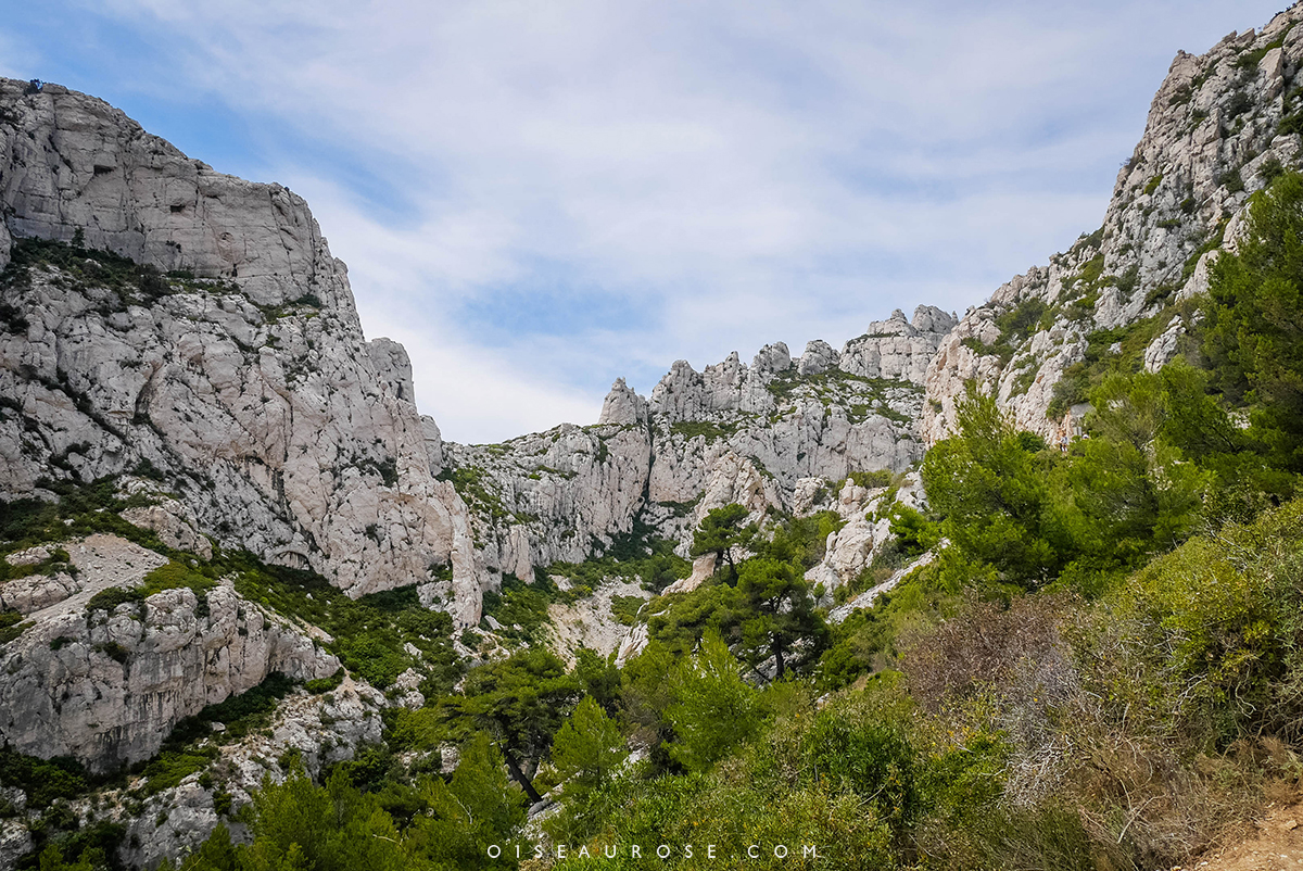 calanques-marseille-paysage