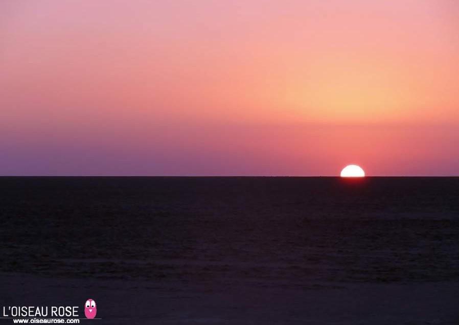 Tunisie: Visite du lac salé de Chott-El-Jérid au lever du soleil…