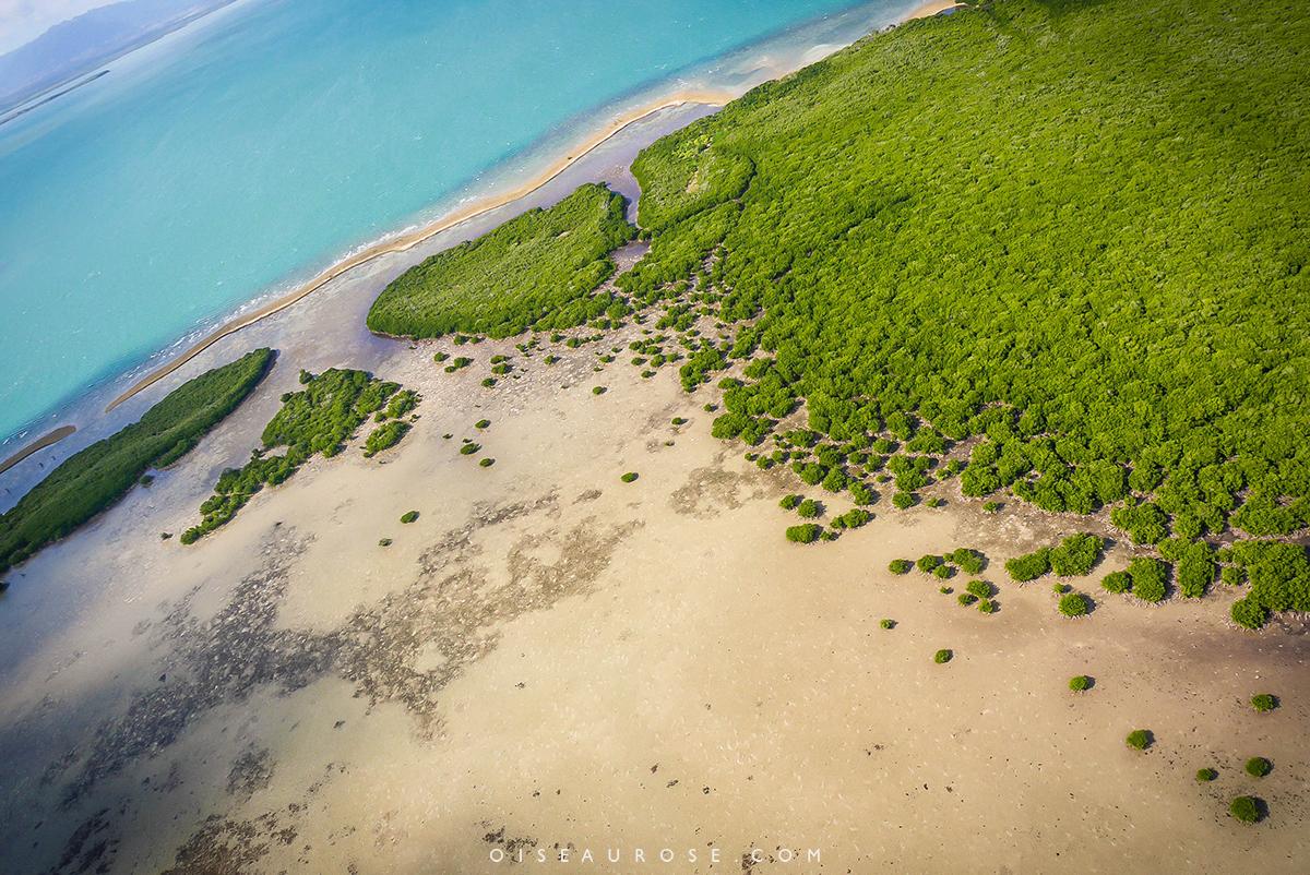 coeur-voh-vue-mangrove
