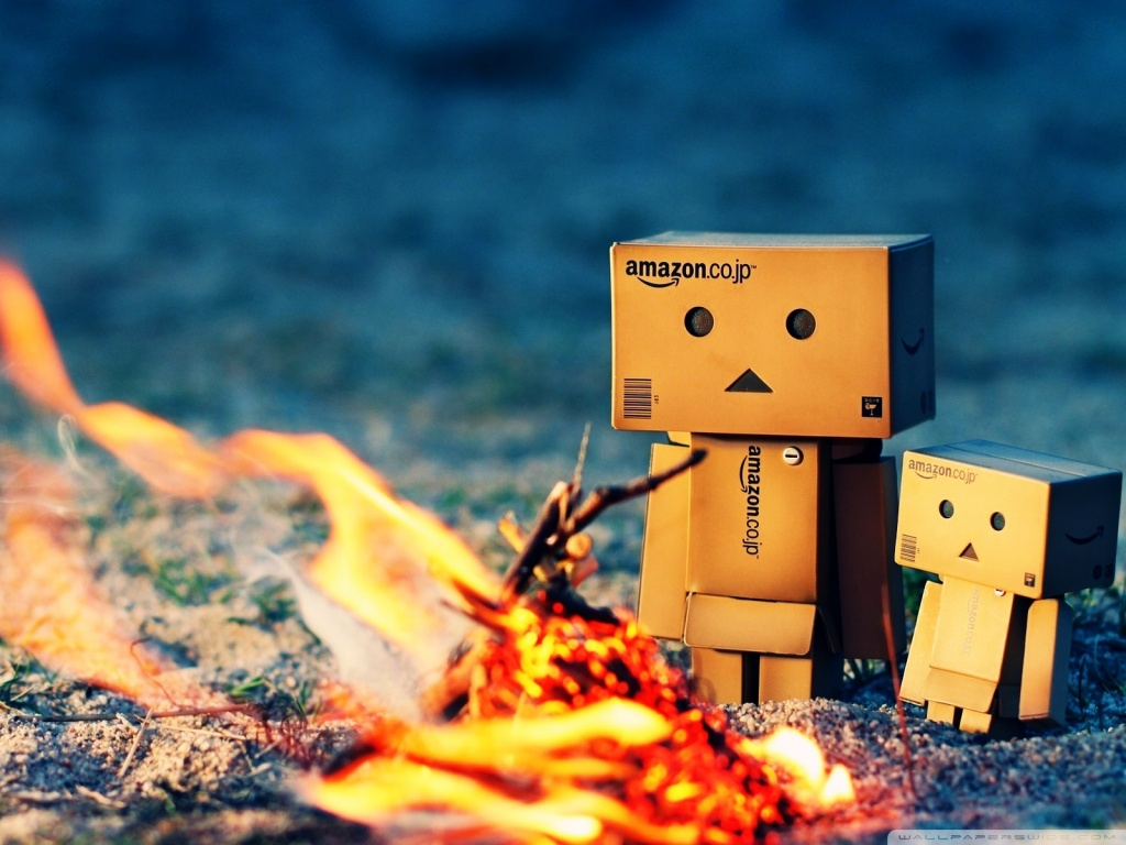 danbo_fire_camp-wallpaper-1024x768