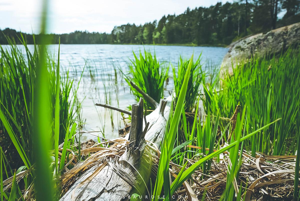 finlande-lac