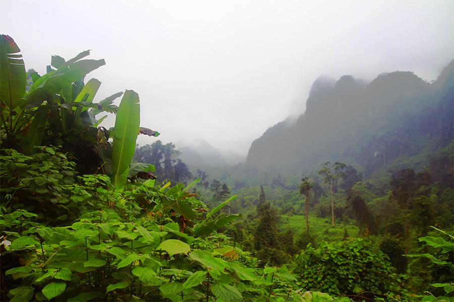 Parc de Phong Nha-Ké Bang