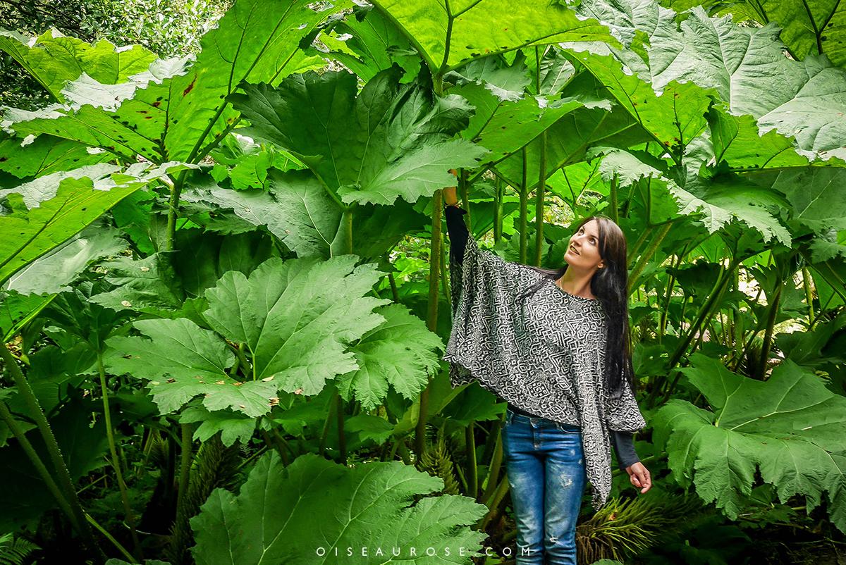inverewe-garden
