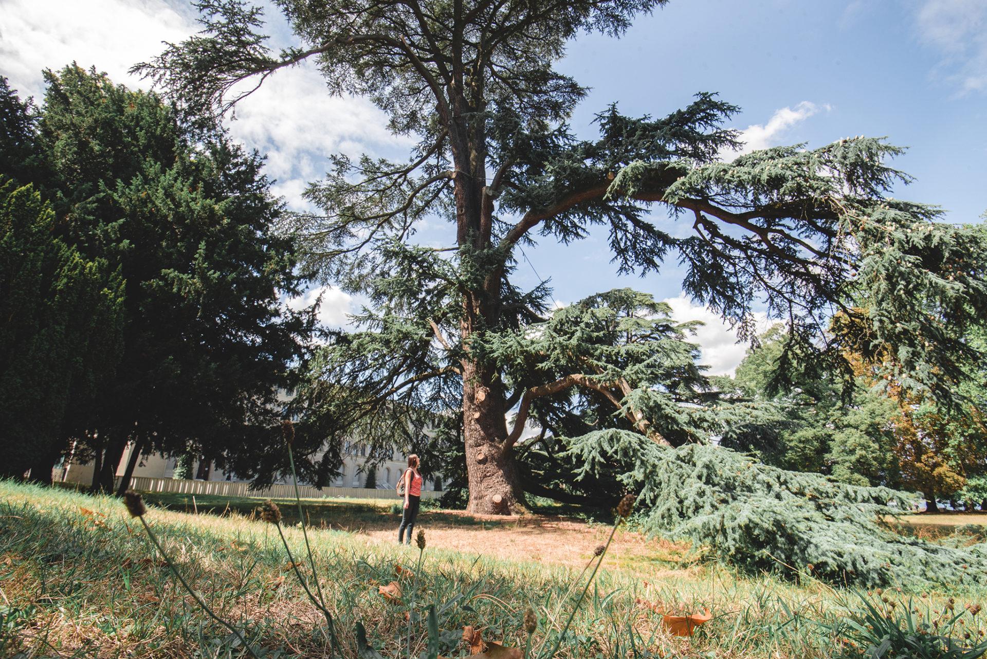 Plus beaux parcs de Genève