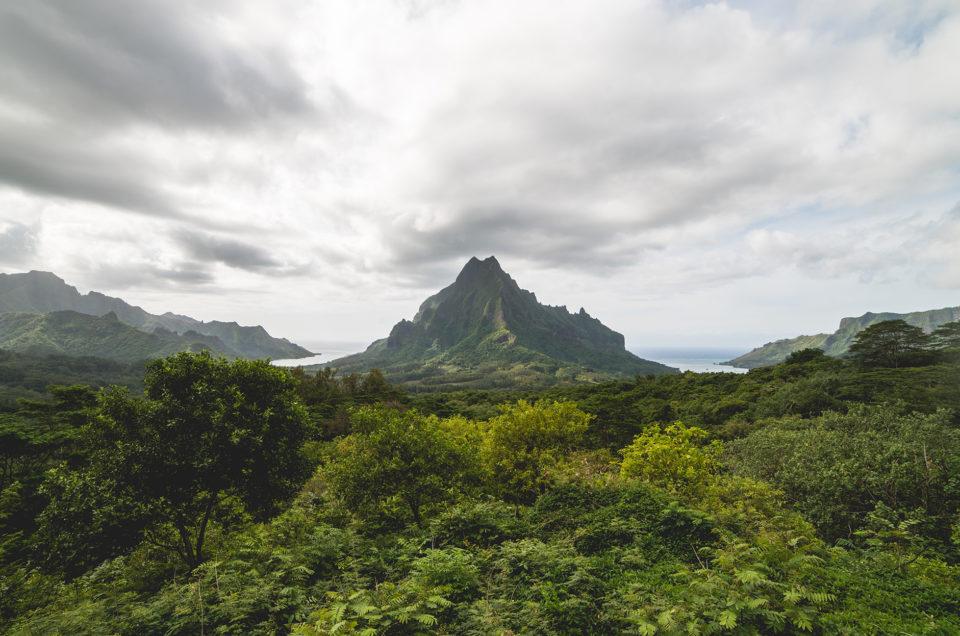 Organiser son séjour sur l'île de Moorea et profiter des meilleures activités