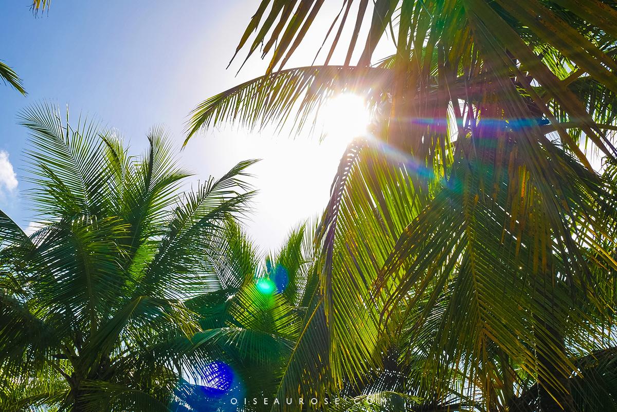 republique-dominicaine-paradis