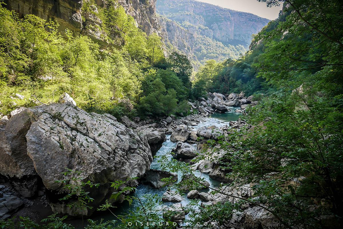 superbes-paysages-randonnée-gorges-du-verdon
