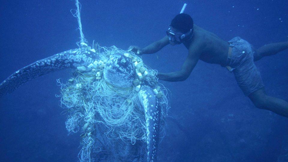 Voyageurs, vos déchets polluent les océans !